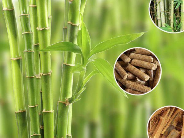 Bamboo Pellets