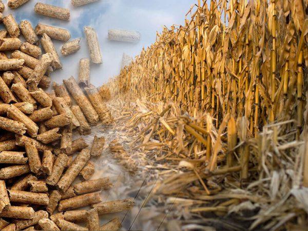 Corn Stover Pellet