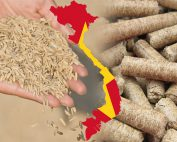 Rice Husk Pellet in Vietnam