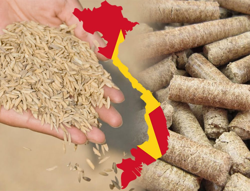 Market Prospect of Rice Husk Pellet Mill in Vietnam