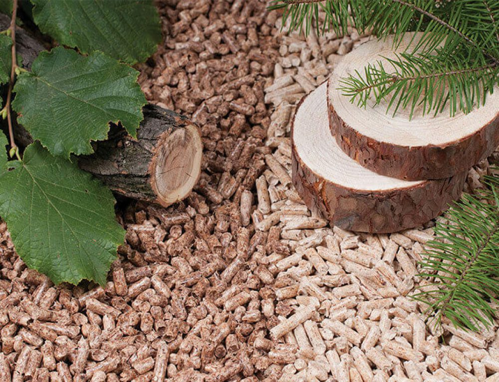 Differences Between Hard Wood Pellets and Soft Wood Pellets